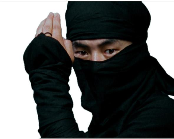 SEO Ninja's